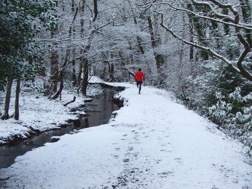 Runner-in-snowy-forest